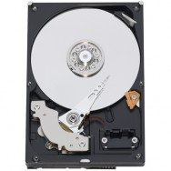 Western Digital - 1TB HD - 7200RPM قرص صلب